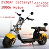 Citycoco electric scooter Big wheel