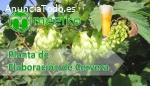 Planta de Elaboración de Cerveza